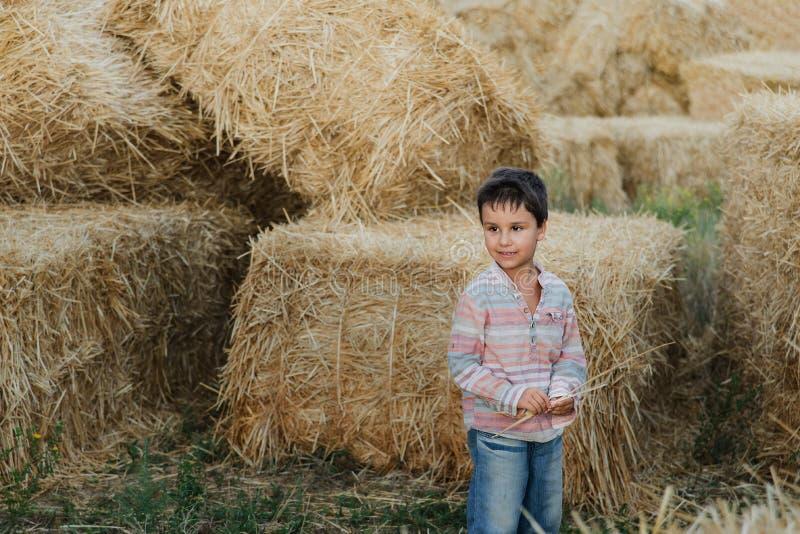 在干草捆附近的小男孩在领域 农场土地的孩子 麦子黄色金黄收获在秋天 乡下自然风景 库存图片