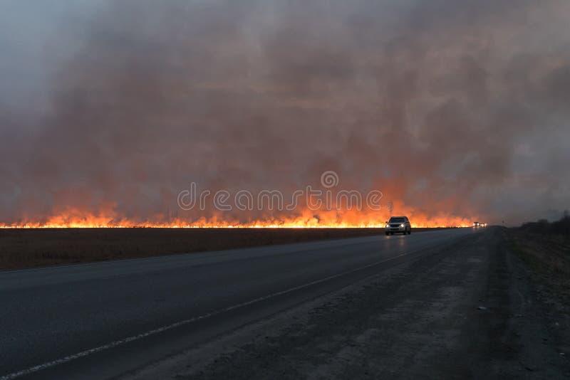 在干草领域的大红火 免版税库存照片