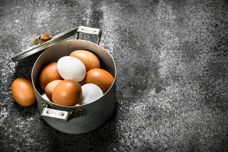 在平底深锅的新鲜的鸡蛋 免版税库存图片