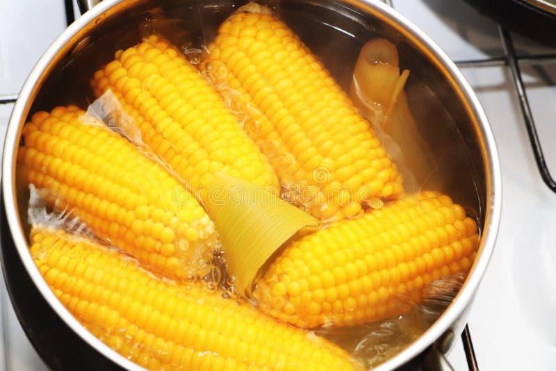 在平底深锅的黄色玉米炖煮的食物 调味的晚餐 库存照片