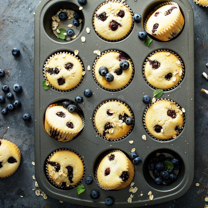 在平底锅的蓝莓松饼 免版税库存照片