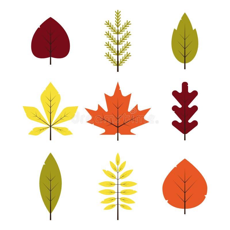 在平的样式设置的秋天不同的叶子 被隔绝的红色,绿色,黄色,橙色叶子 皇族释放例证