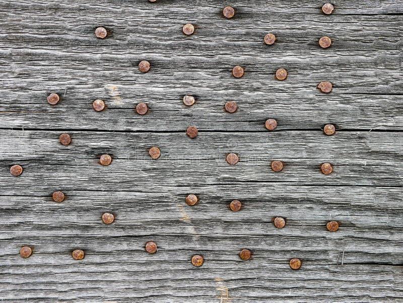 在年迈的松木板关闭的生锈的钉子射击 库存照片