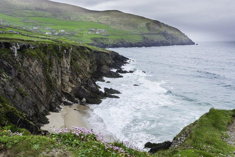 在幽谷半岛的Slea头,县凯利,爱尔兰 免版税库存图片