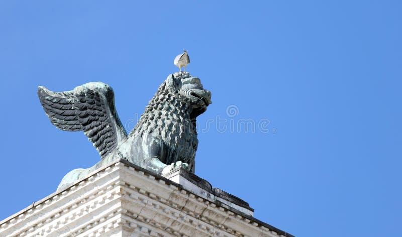在广场圣marco的飞过的狮子雕象在威尼斯和海鸥  图库摄影