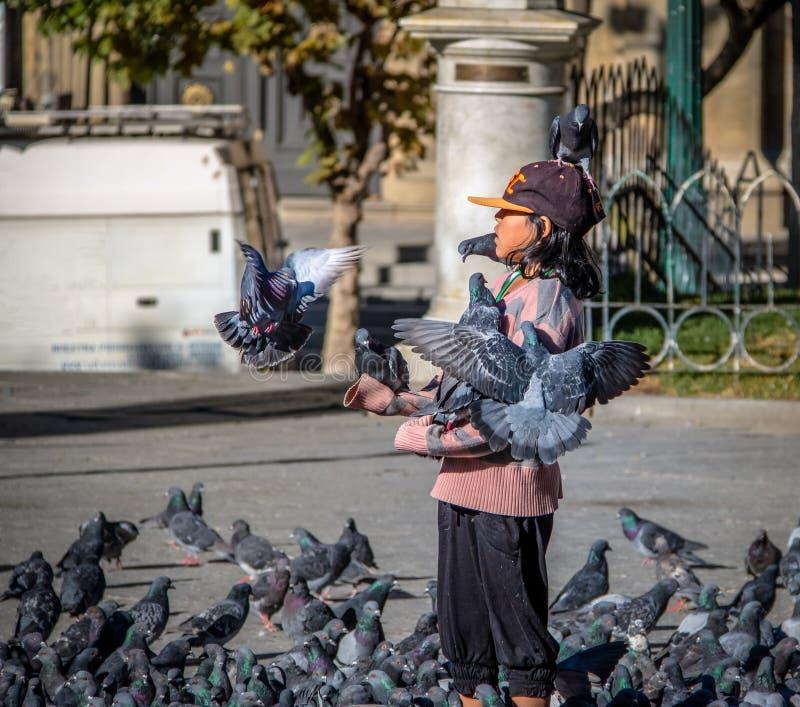 在广场Murillo -拉巴斯,玻利维亚的男孩哺养的pidgeons 库存图片