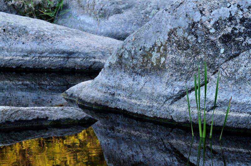 在底层美丽的石头和植物花岗岩Aktovo峡谷 库存图片