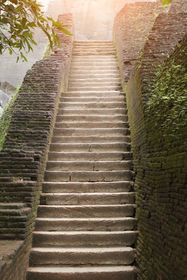 在废墟的楼梯,盖用青苔 库存照片