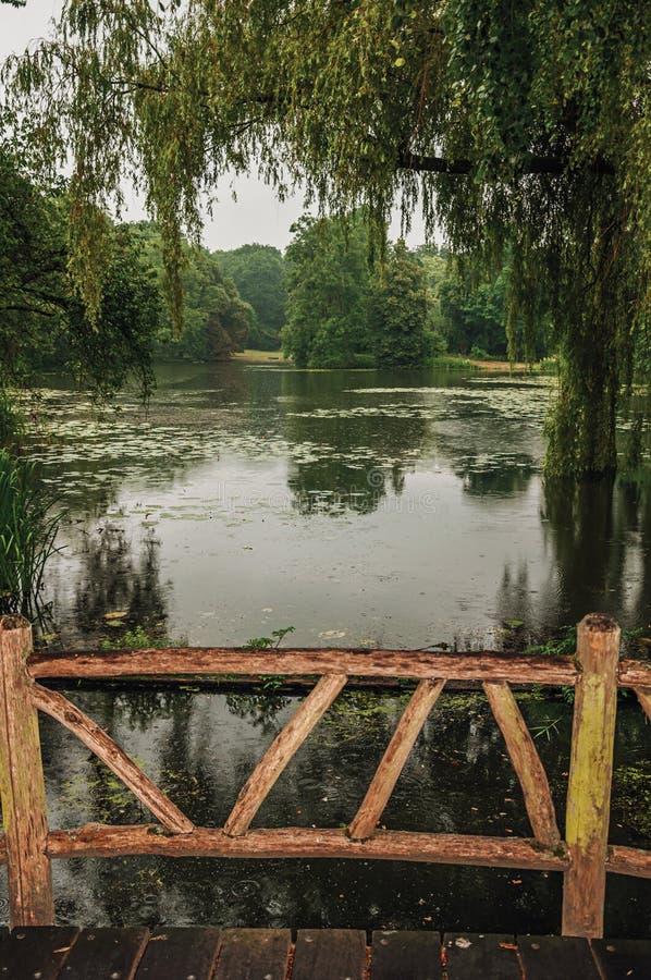 在庭院中的木桥有树的在德哈尔城堡的一个雨天,在乌得勒支附近 免版税图库摄影