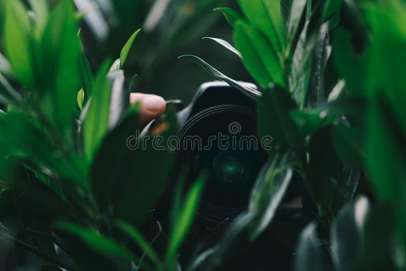 在庭院掩藏的人留下拿着照相机和采取无固定职业的摄影师射击 库存图片