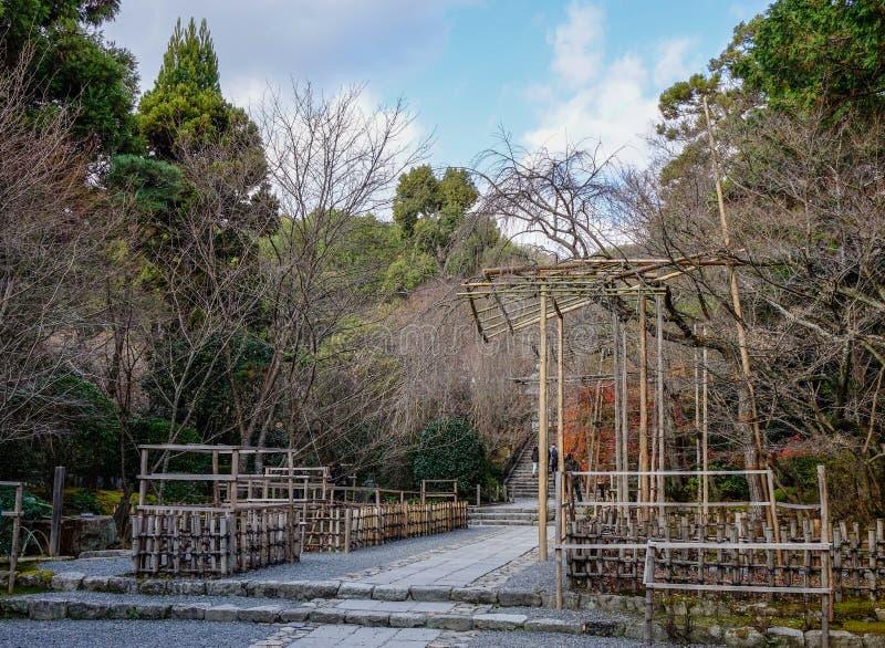 在庭院的树在京都,日本 图库摄影