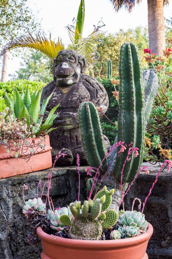 在庭院的猴子 免版税图库摄影