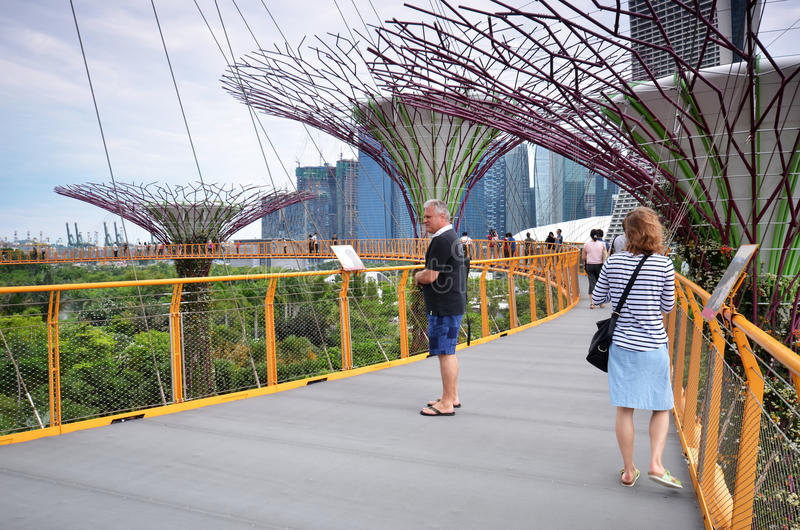 在庭院的Supertree凹线由海湾在新加坡 库存照片