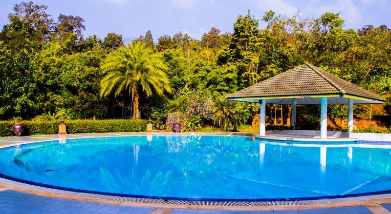在庭院里面的游泳池 免版税库存图片