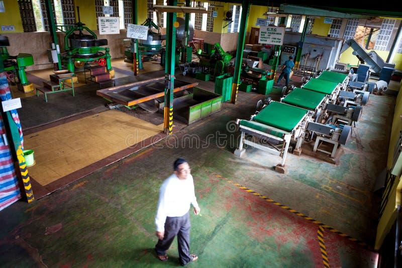 在康提,斯里南卡附近的茶工厂 库存照片