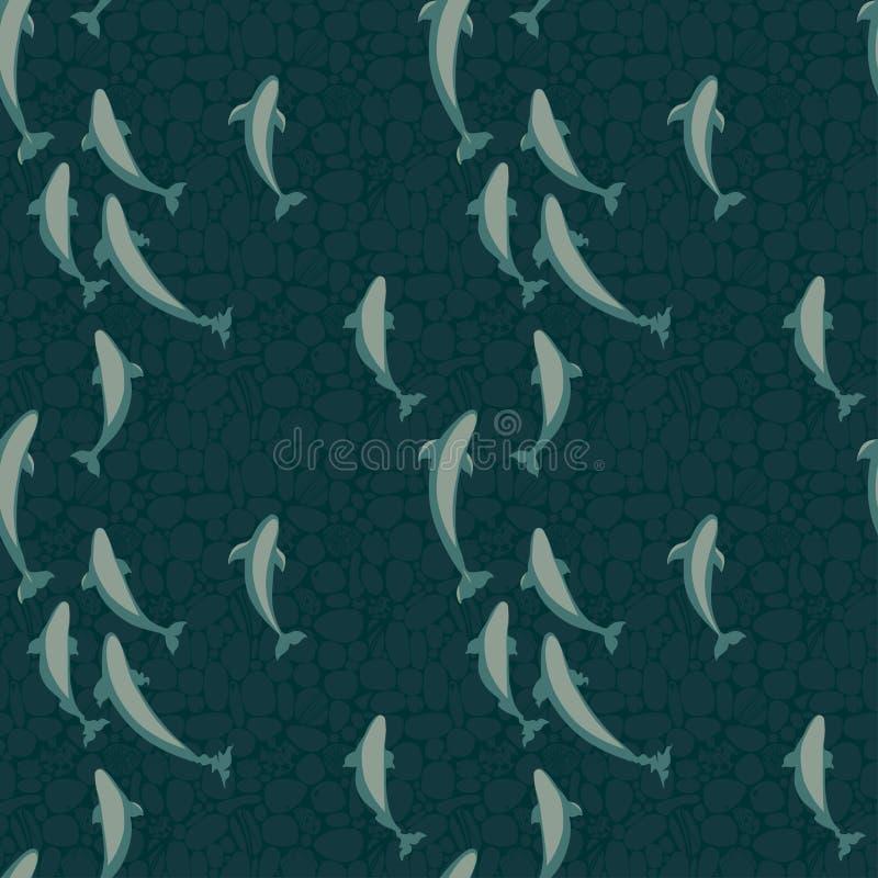在开放海洋,清楚的导航与白海豚鲸鱼群的样式海水, 皇族释放例证