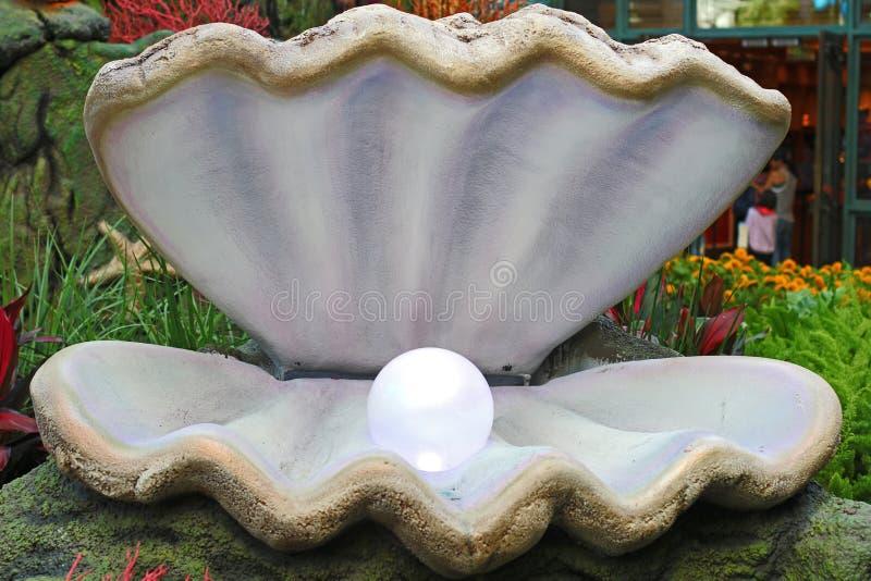 在开放牡蛎的珍珠 库存图片