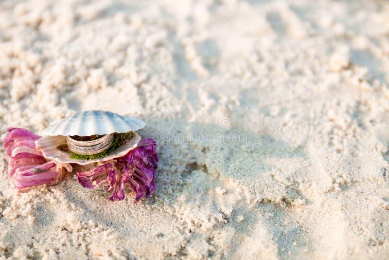 在开放贝壳的定婚戒指在海洋海滩 复制空间 框架 图库摄影