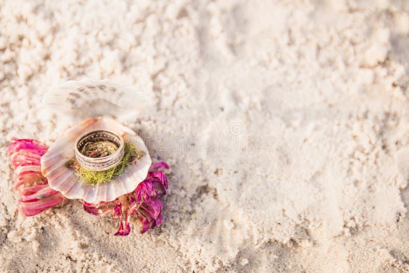 在开放贝壳的定婚戒指在海洋海滩 复制空间 框架 免版税库存照片