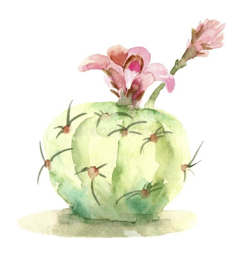 在开花的仙人掌 皇族释放例证