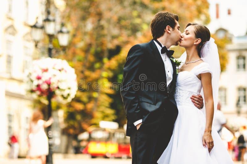 在开花的老cit街道上的惊人的婚礼夫妇亲吻  免版税图库摄影