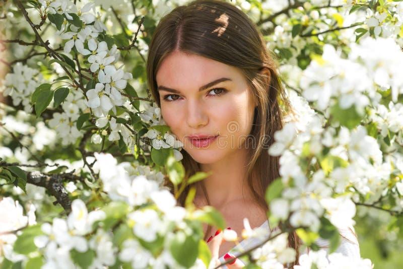 在开花的苹果树附近的妇女 库存图片