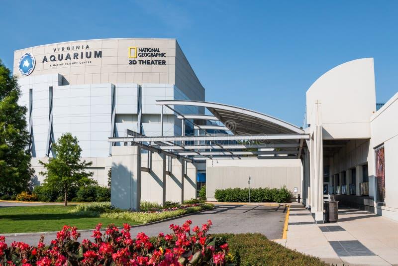 在弗吉尼亚水族馆和海洋科学中心前面的花 免版税图库摄影