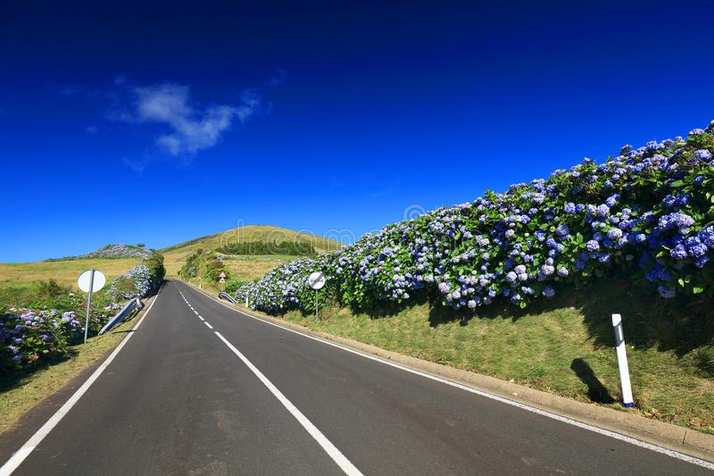 在弗洛雷斯岛的美丽的高山路在一个晴天 免版税库存图片