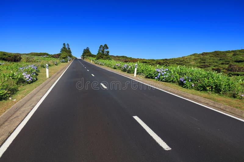 在弗洛雷斯岛的美丽的高山路在一个晴天 库存图片