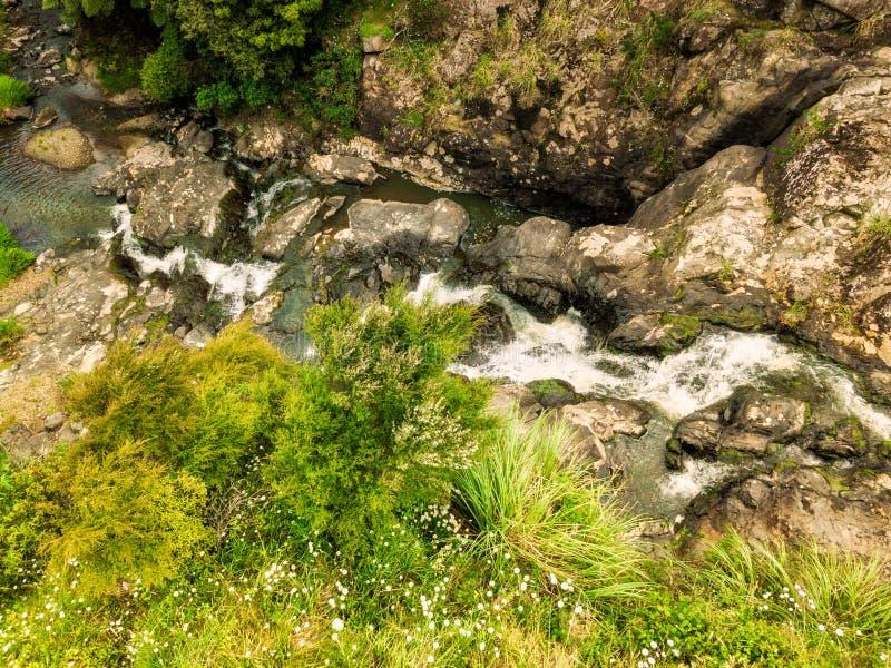 在当地灌木的小瀑布 免版税库存照片