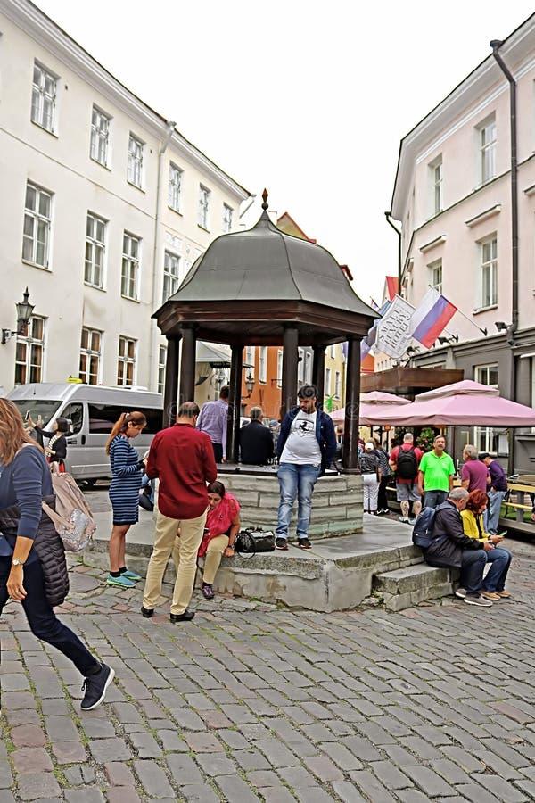 在很好猫附近的不明身份的人在Rataskaevu街,塔林,爱沙尼亚上 免版税库存照片