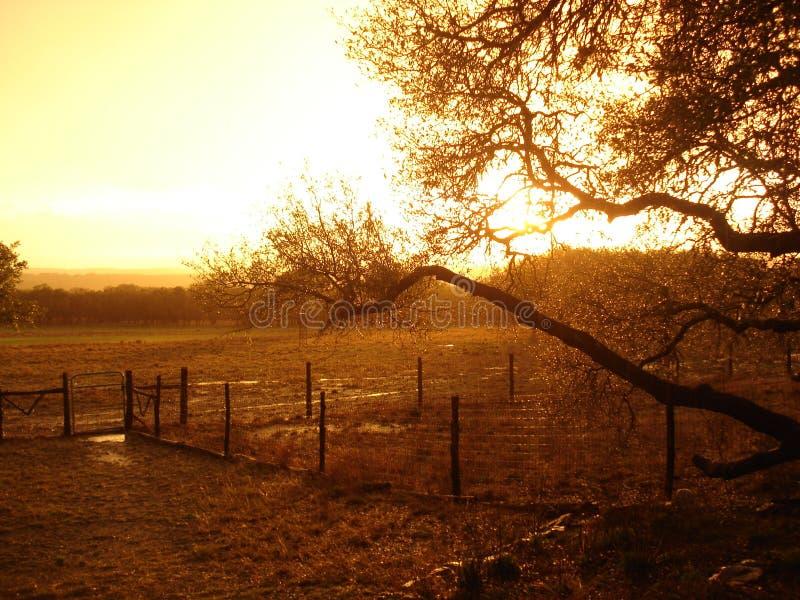 在得克萨斯农场的日落 免版税库存照片