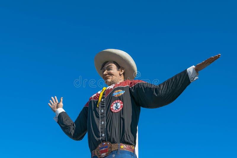 在得克萨斯状态市场的大Tex  库存图片
