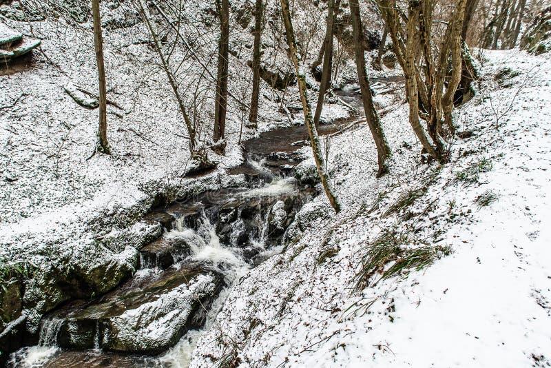 在德国山的冬天风景,多雪的森林,在雪,冬天小河,瀑布,在brodenbach附近的自然的树 库存图片