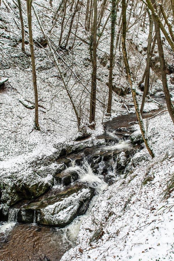 在德国山的冬天风景,多雪的森林,在雪,冬天小河,瀑布,在brodenbach附近的自然的树 免版税库存照片