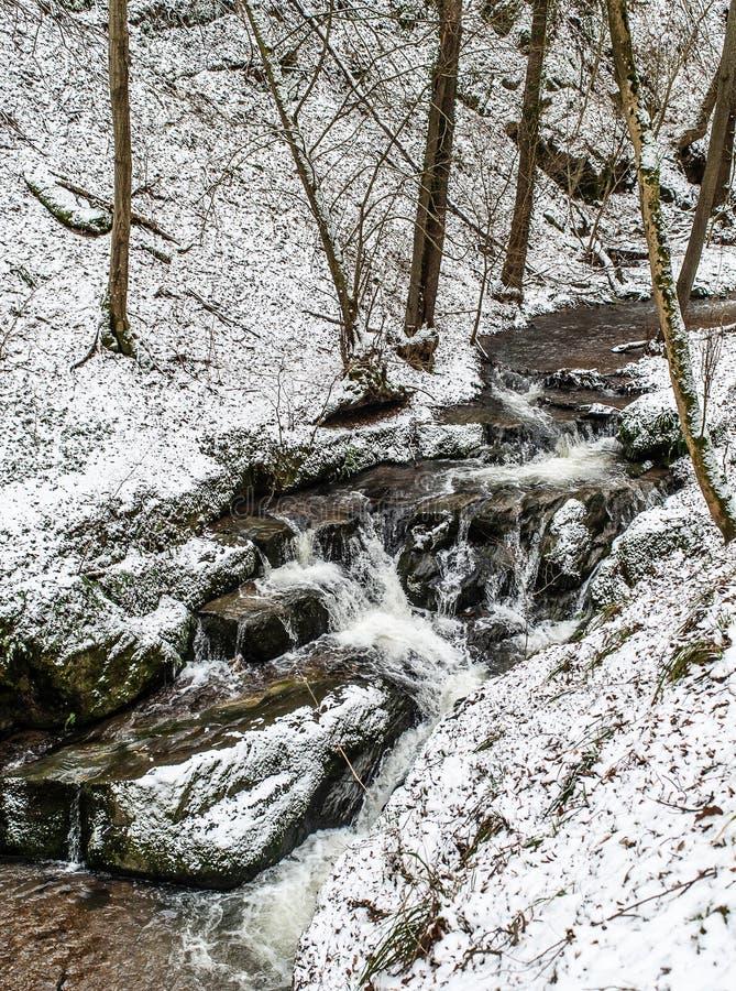 在德国山的冬天风景,多雪的森林,在雪,冬天小河,瀑布,在brodenbach附近的自然的树 免版税图库摄影