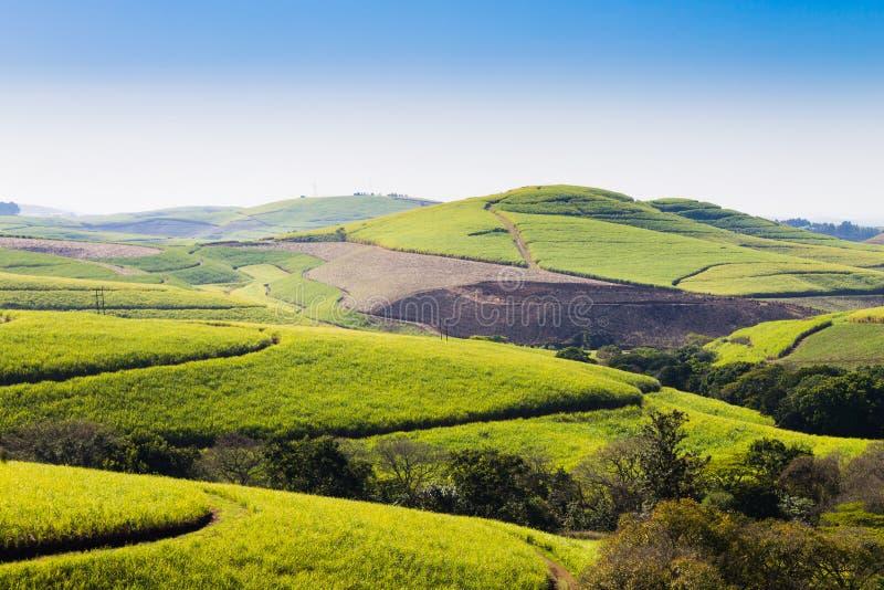 在德班,南Afri附近的一千小山的谷的看法 免版税库存图片