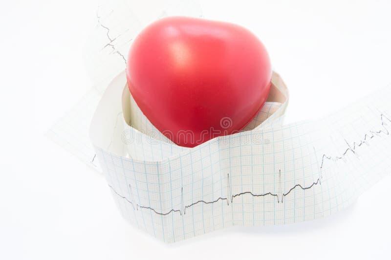 在心电图卷磁带上的心脏谎言与打印的ECG波浪的 心脏病学、诊断和治疗的照片病理性 库存照片