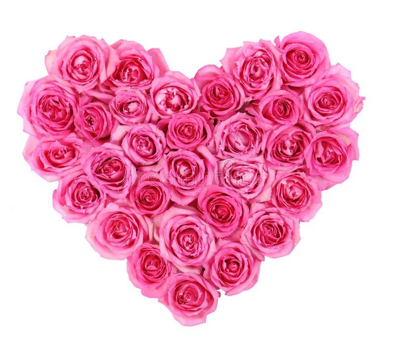 在心脏形状的桃红色玫瑰在白色隔绝了隔绝 图库摄影