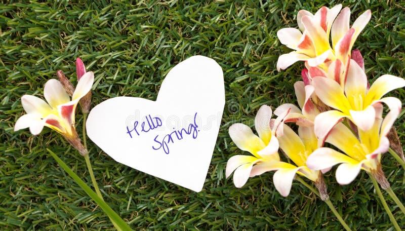 在心脏形状的笔记与词你好春天的! 与花 图库摄影