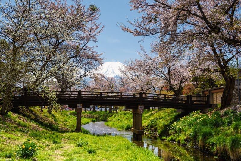 在忍野Hakkai村庄和富士的樱花 免版税库存照片