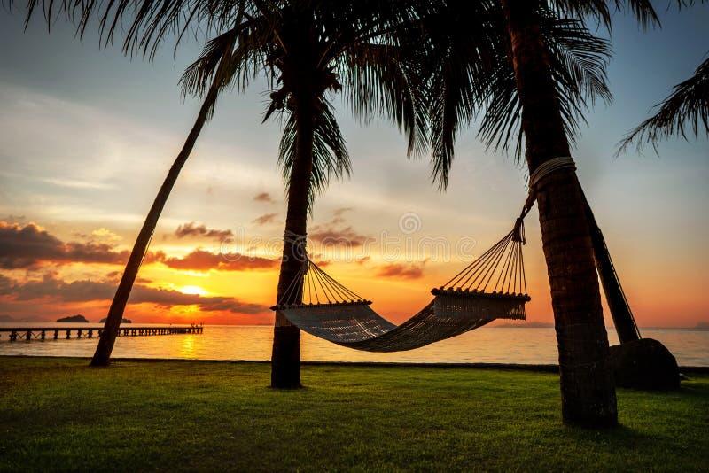 在忽略海和日落的热带棕榈树的吊床 免版税库存图片