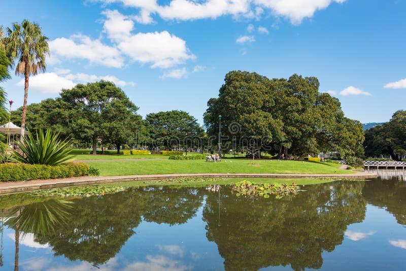 在悉尼大学附近的湖诺瑟姆和公园 库存图片