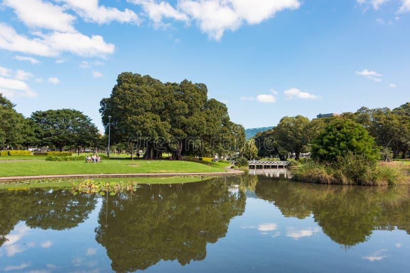 在悉尼大学附近的湖诺瑟姆和公园 图库摄影