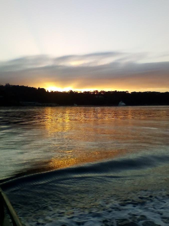 在悉尼港口的日落,在对Mosman的途中,NSW,澳大利亚 库存照片