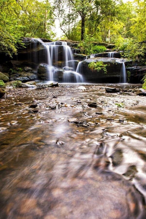 在悉尼寻找小河瀑布 库存照片