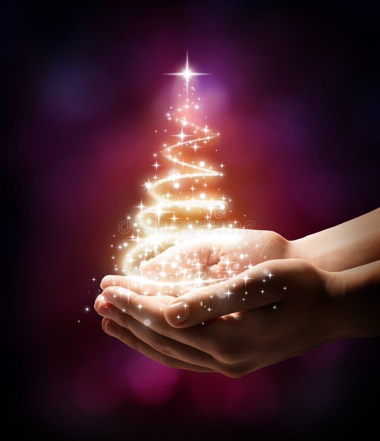 在您的手红色的圣诞树 库存图片