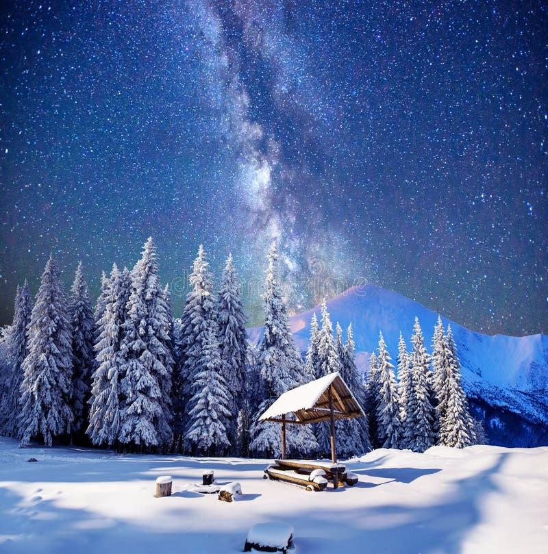 在意想不到的除夕的满天星斗的天空 库存照片