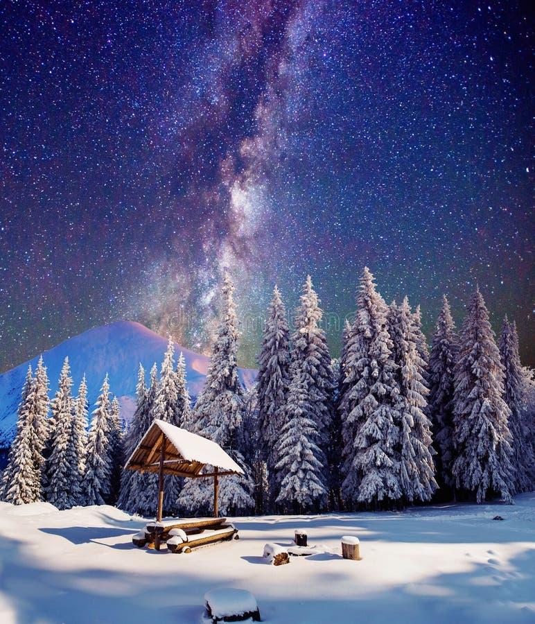 在意想不到的除夕的满天星斗的天空 免版税图库摄影