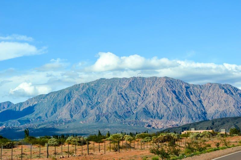 在我穿越阿根廷萨尔塔的假期 库存照片